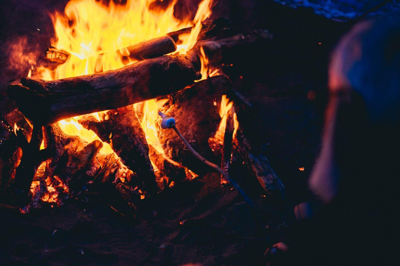 薪暖炉 焚き火
